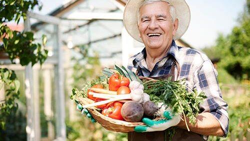 Organic experience