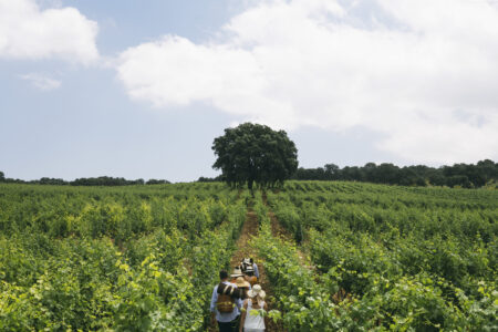 Winefulness: experiencias mindfulness con estilo andaluz para wine lovers