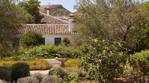 Hotel Boutique entre olivares y viñedos